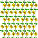 9084   daisy repeat pattern