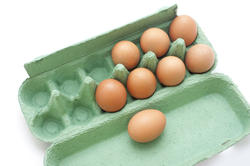 10609   Brown Chicken Eggs in a Green Box