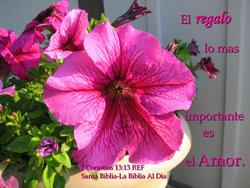 10734   El Regalo Lo Mas Importante