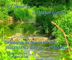 10900   El Senor es mi Mayor Gozo