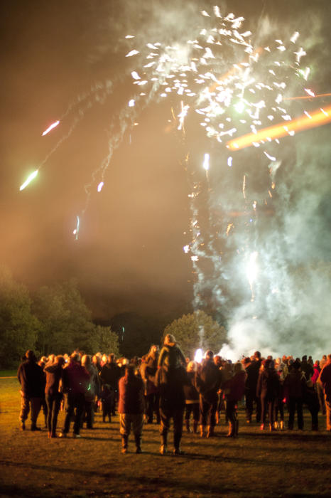 Crowds standing in a field watching a fireworks display with showers of sparks exploding high in the air in a colourful burst on Bonfire Night