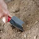 9852   Man preparing a seedbed in the garden