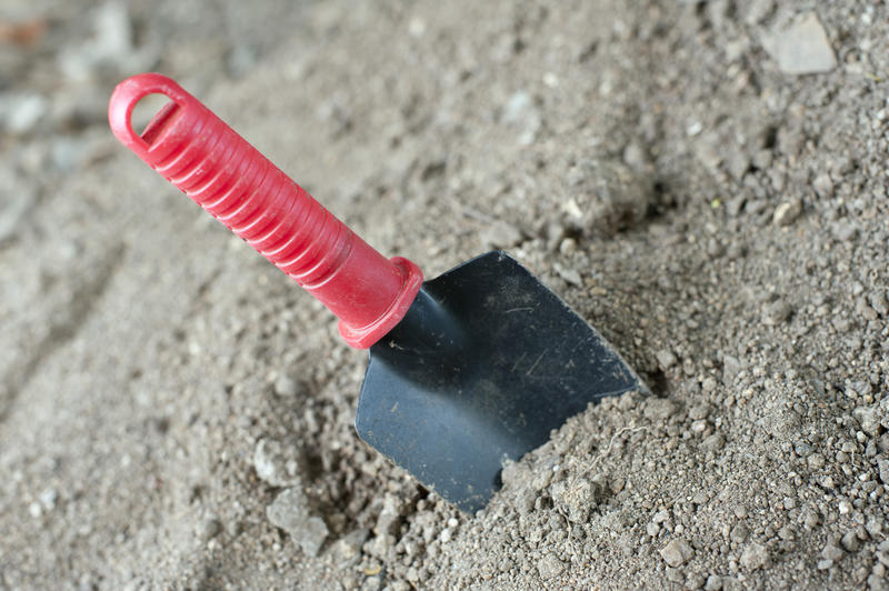Garden trowel with a plastic covered handle for digging standing upright in the soil ready for planting in spring