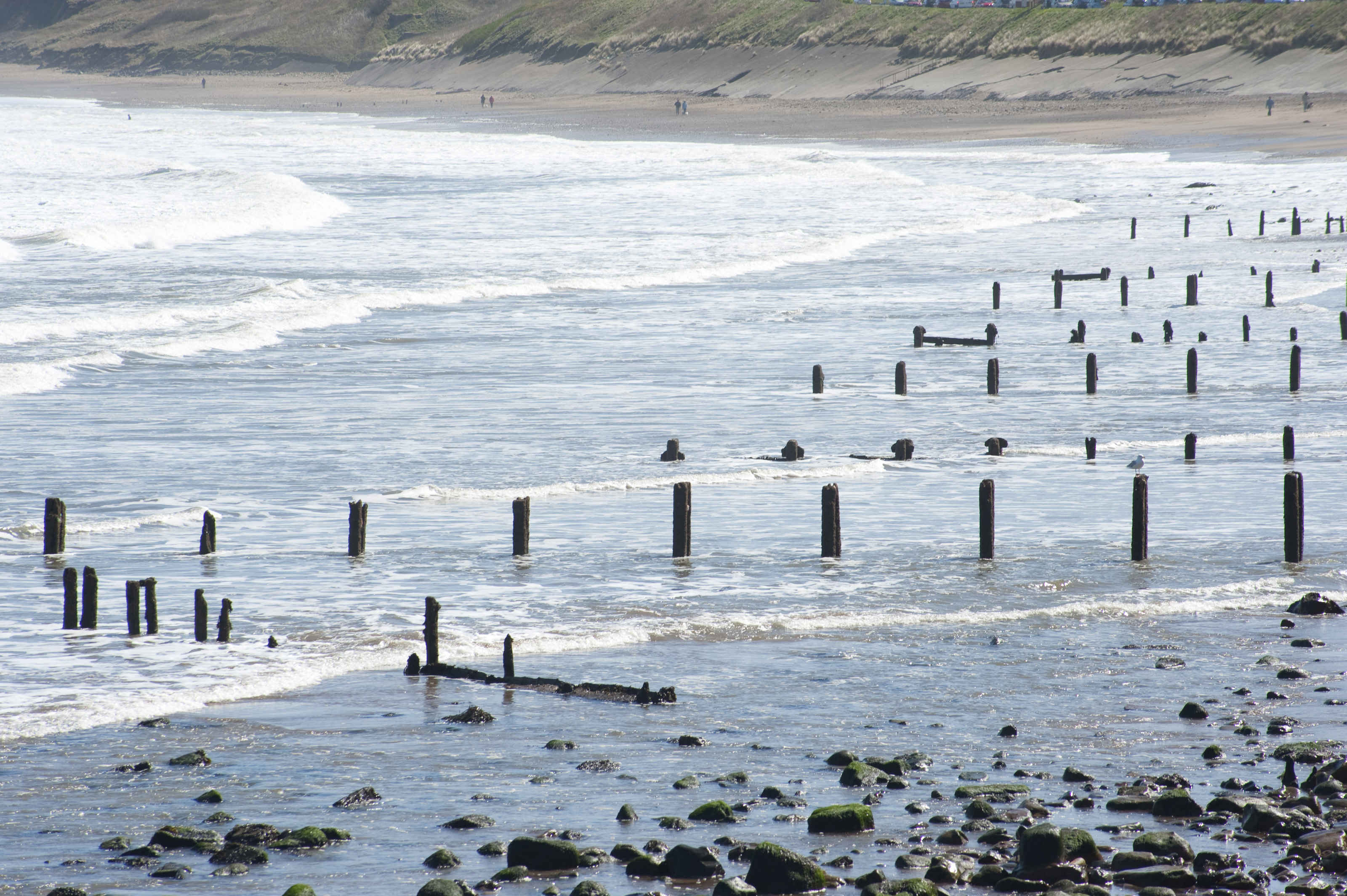 Free Stock Photo 7845 Coastal defenses | freeimageslive