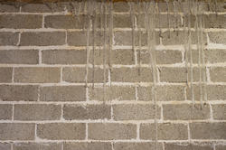 10924   Close Up of Grungy Weathered Brick Wall