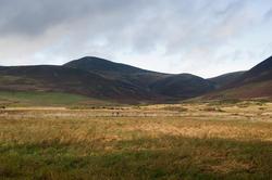 10943   Highlands landscape