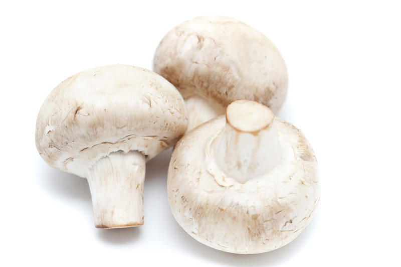 Close up Three Healthy Fresh Uncooked Mushrooms Isolated on White Background