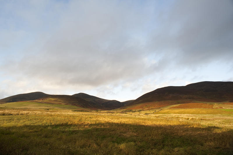 10944   Grassy Landscape with Hills Under Stormy Sky