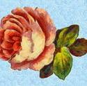 9103   pink rose painting