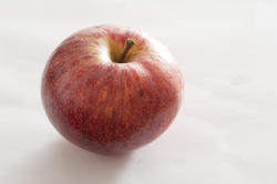 11801   Ripe Red Apple on White Background