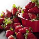 10418   Freshly picked harvest of ripe strawberries