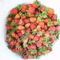 8381   strawberries