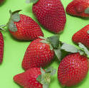 8523   Colourful strawberry background