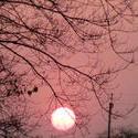 11520   sun set
