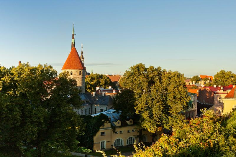 <p>Spires, Towers and Roofs of Old Tallinn among Greenery on a Summer Sunny Afternoon</p>