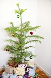 8674   Pine Christmas tree and gifts