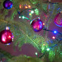 11577   Colorful Christmas tree decorations