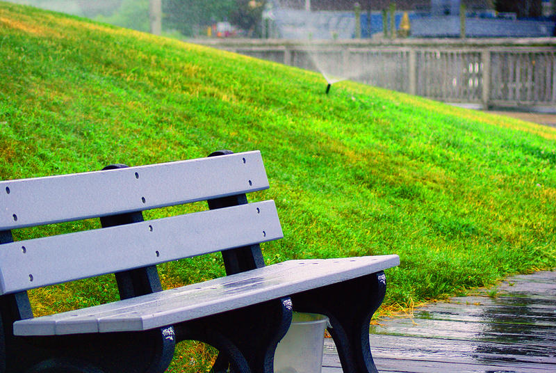 <p>Wet Bench on a Summer Day</p>