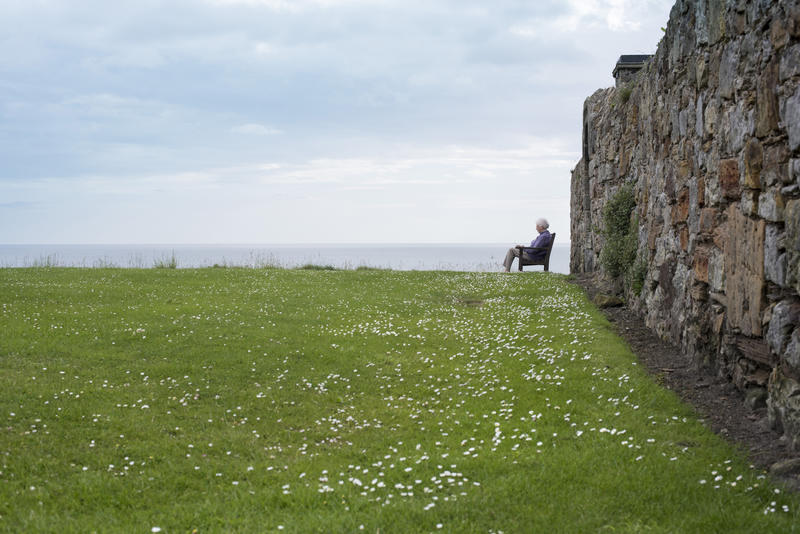 Person sitting on bench over green flowery grass with sky and ocean in background