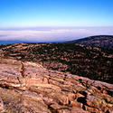 16111   Acadia National Park Cadillac Mountain View