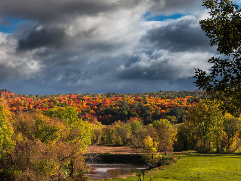 <p>Vermont foliage colors with maple trees clouds and meadow.</p>