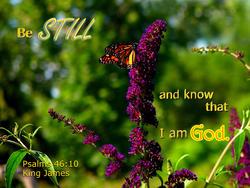 17116   Be Still