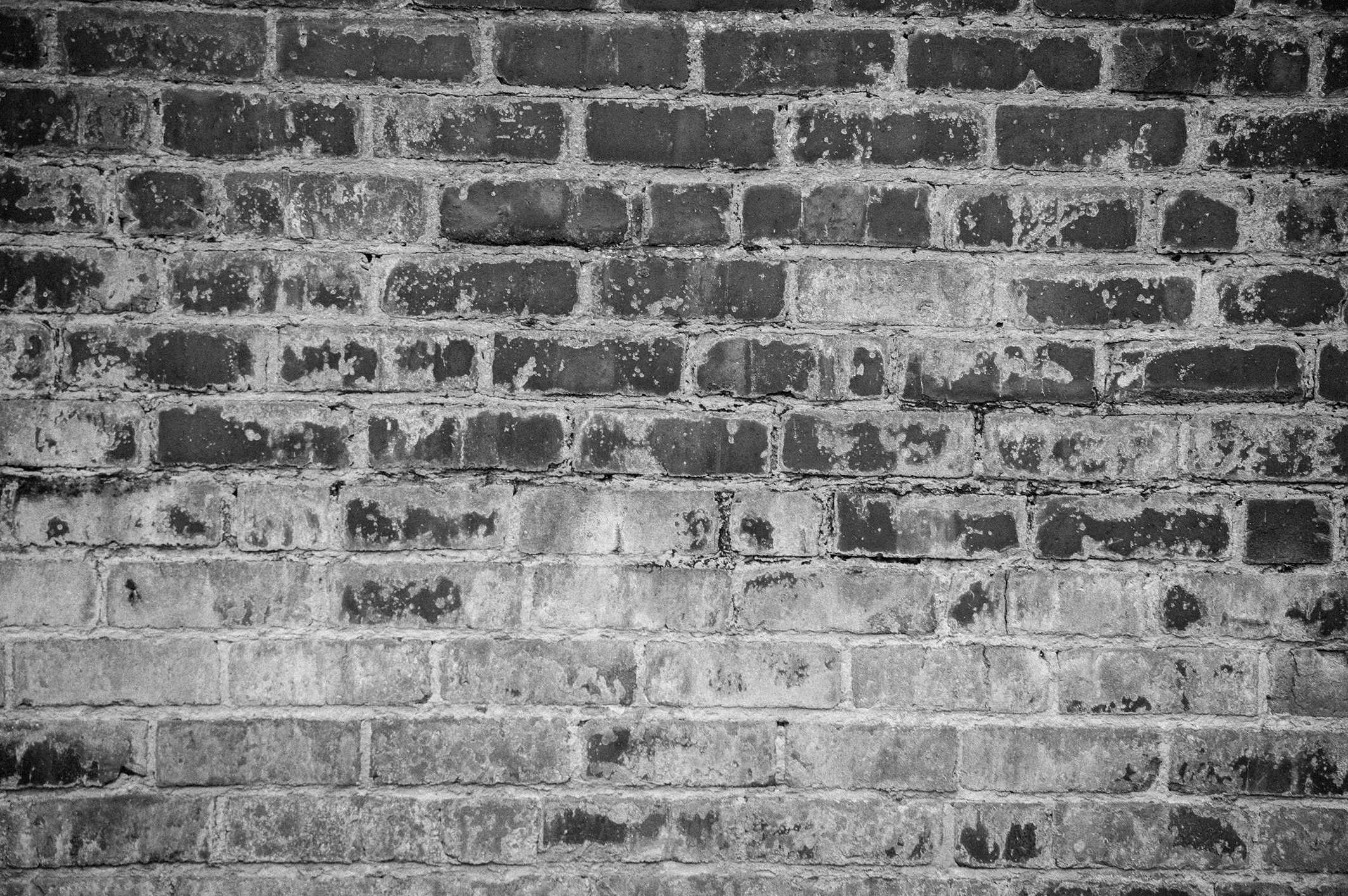 Bricks wall background in black and white background