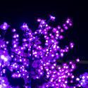 16800   Pink Christmas lights