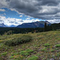 12622   Colorado San Juan Mountain Meadow and Clouds