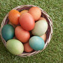 13470   Basket filled with easter eggs