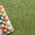 13471   Easter eggs on grass