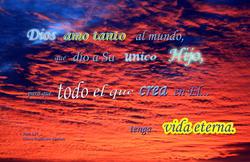 17012   Dios Amo Tanto Nosotros