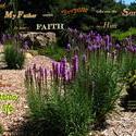 16738   Faith in the Son of God