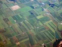 12658   Aerial landscape view of lush green farmland