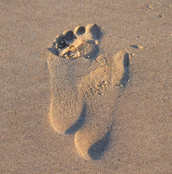 17021   Footprint in the sand