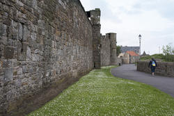 12900   Tourist near wall of Saint Andrews Cathedral
