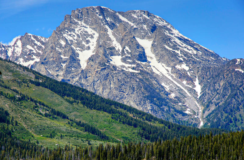 <p>A green forested slope serves as foreground to a glacier covered mountain peak at Grand Teton National Park.</p>