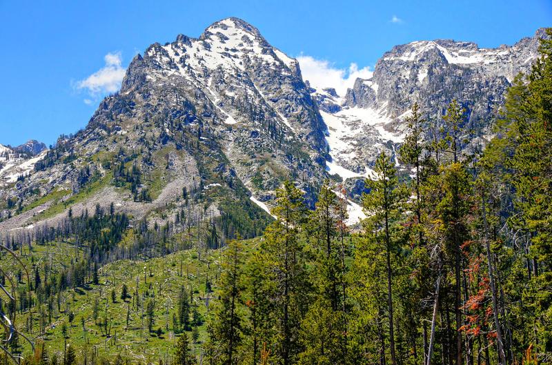 16104   Grand Teton Snowy Peak