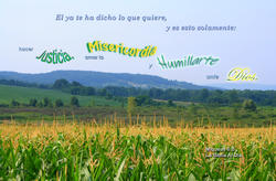 17139   Humillarte Ante Dios