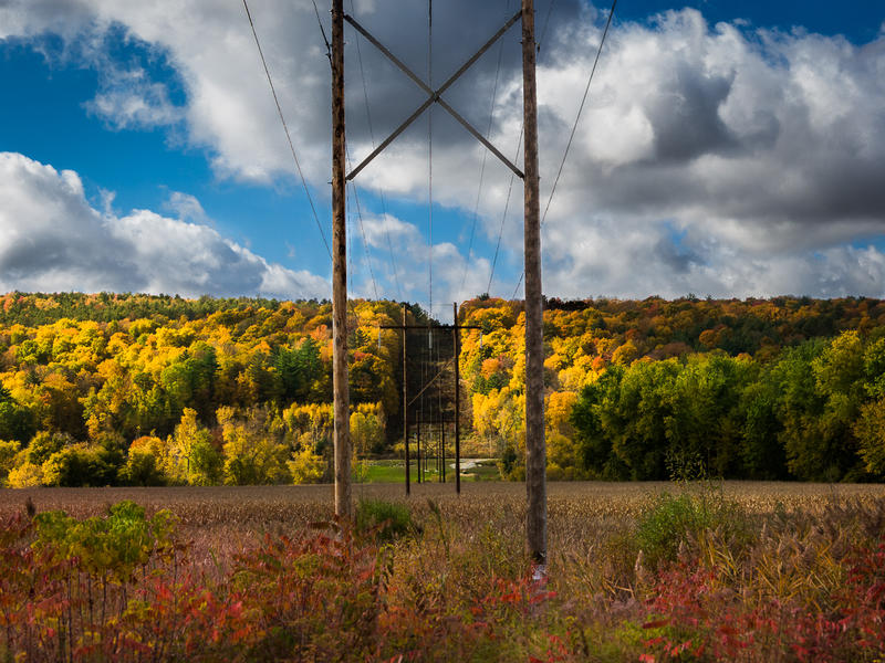 <p>Autumn Powerlines with colorful trees.</p>
