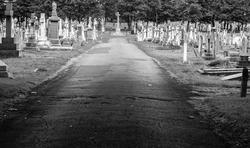 17045   Layton cemetery / graveyard
