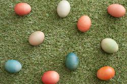 13486   Easter eggs on grass