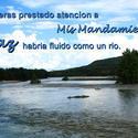 16928   Paz Como un Rio