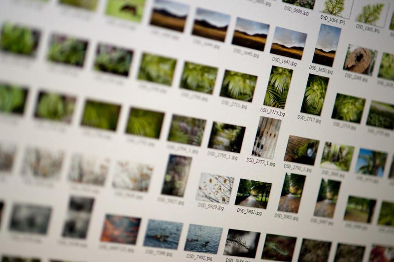 12185   Photographic image asset management closeup