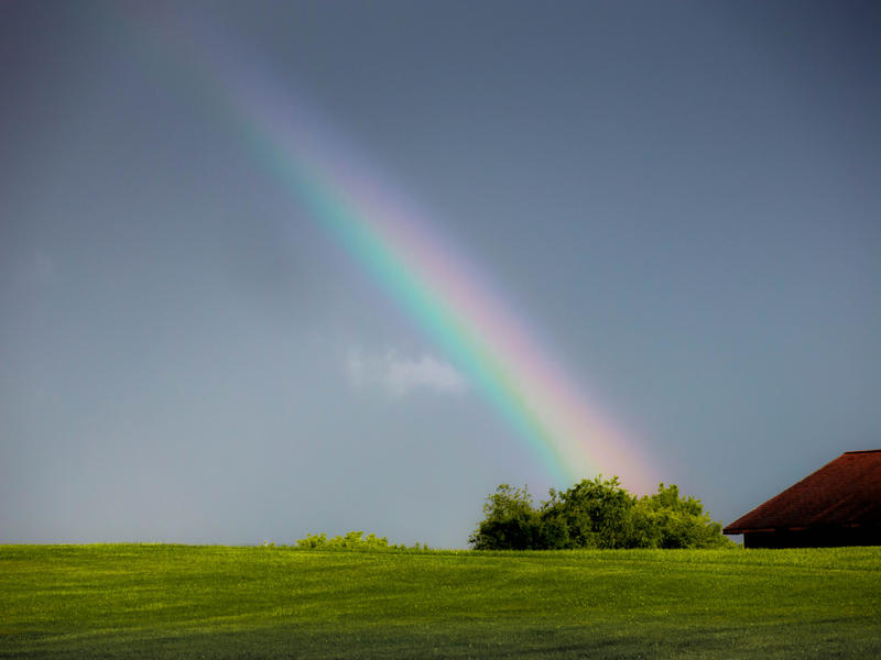 <p>Rainbow on the lawn after the rain.</p>