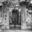 13054   rasberry entrance bw