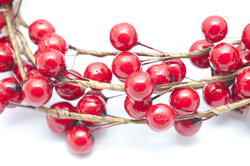 13161   Isolated spray of festive red Christmas berries