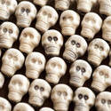 12784   Neatly arranged plastic skull background
