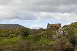 13235   sheep grazing near cottage in connemara