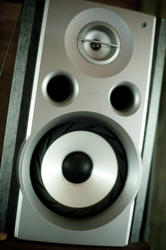 13729   Speaker for a sound system